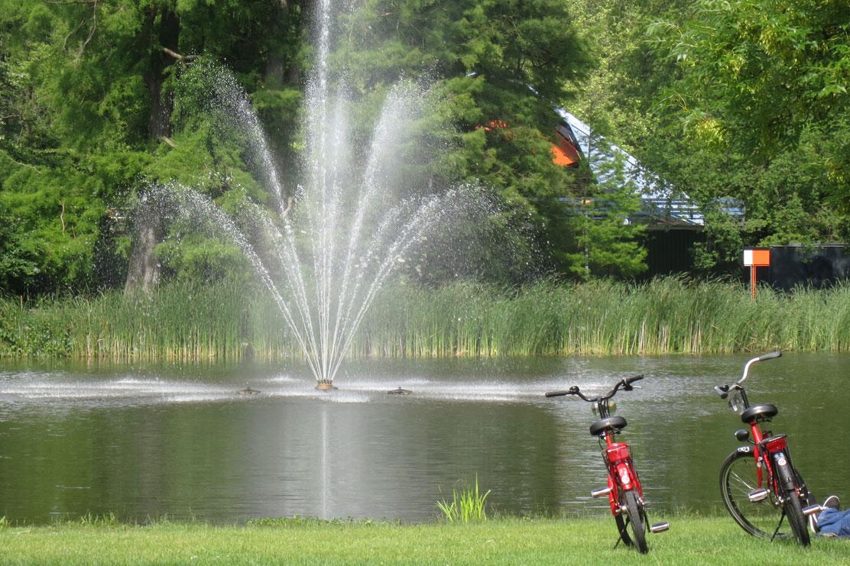 Vondelpark area ride a bike